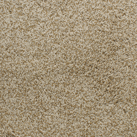 Dixie Group Active Family Gallery Yellow Textured Indoor Carpet