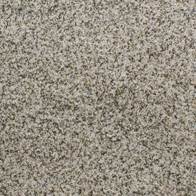 Dixie Group Active Family Exuberance I 101 Multicolor Textured Indoor Carpet