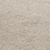 Dixie Group Active Family Exuberance I Cream/Beige/Almond Textured Indoor Carpet