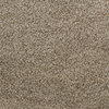Dixie Group Active Family Exuberance I Brown/Tan Textured Indoor Carpet