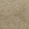 Dixie Group Active Family Exuberance I Yellow/Gold Textured Indoor Carpet