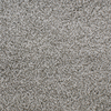 Dixie Group Active Family Exuberance I Gray/Silver Textured Indoor Carpet