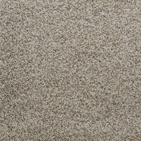Dixie Group Active Family Exuberance I 103 Brown Textured Indoor Carpet