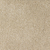 Dixie Group Trusoft Briar Patch Cream/Beige/Almond Cut Pile Indoor Carpet