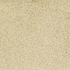 Dixie Group Trusoft Briar Patch Yellow/Gold Cut Pile Indoor Carpet