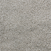 Dixie Group Trusoft Briar Patch Gray/Silver Cut Pile Indoor Carpet