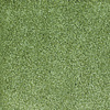 Dixie Group Trusoft Briar Patch Green Cut Pile Indoor Carpet