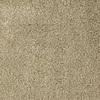 Dixie Group Trusoft Briar Patch Brown/Tan Cut Pile Indoor Carpet