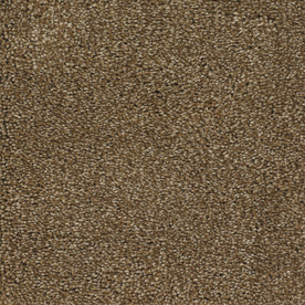 STAINMASTER TruSoft Gallery Brown Textured Indoor Carpet