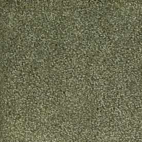 STAINMASTER TruSoft Gallery Green Textured Indoor Carpet