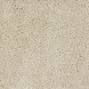 Dixie Group Trusoft Shafer Valley Cream/Beige/Almond Cut Pile Indoor Carpet