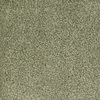 Dixie Group Trusoft Shafer Valley 118 Green Cut Pile Carpet