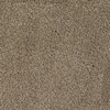 Dixie Group Trusoft Shafer Valley 103 Brown Cut Pile Carpet