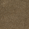 Dixie Group Trusoft Shafer Valley 111 Brown/Tan Cut Pile Carpet