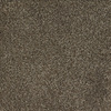 Dixie Group Trusoft Shafer Valley Brown/Tan Cut Pile Indoor Carpet