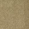 Dixie Group Trusoft Shafer Valley 116 Yellow/Gold Cut Pile Carpet