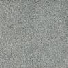 STAINMASTER TruSoft Shafer Valley Blue Textured Indoor Carpet