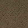Dixie Group Trusoft Galesburg Brown/Tan Fashion Forward Indoor Carpet