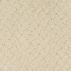 STAINMASTER TruSoft Gallery Cream Cut and Loop Indoor Carpet