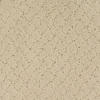 Dixie Group Trusoft Galesburg Cream/Beige/Almond Fashion Forward Indoor Carpet