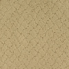 STAINMASTER TruSoft Galesburg Yellow/Gold Cut and loop Indoor Carpet