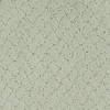 STAINMASTER TruSoft Galesburg Green Cut and Loop Indoor Carpet