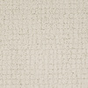 Dixie Group Trusoft Perpetual Cream/Beige/Almond Fashion Forward Indoor Carpet