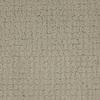 STAINMASTER TruSoft Perpetual Cream/Beige/Almond Cut and Loop Indoor Carpet