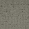 Dixie Group Trusoft Perpetual Gray/Silver Fashion Forward Indoor Carpet
