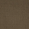 Dixie Group Trusoft Perpetual Brown/Tan Fashion Forward Indoor Carpet