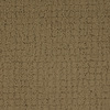 STAINMASTER TruSoft Perpetual Brown/Tan Cut and Loop Indoor Carpet