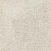 STAINMASTER TruSoft Chimney Rock Cream/Beige/Almond Textured Indoor Carpet