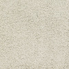 Dixie Group Trusoft Chimney Rock Cream/Beige/Almond Textured Indoor Carpet