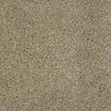 Dixie Group Trusoft Chimney Rock Brown/Tan Textured Indoor Carpet