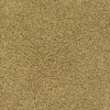 STAINMASTER TruSoft TruSoft Gallery Yellow Textured Indoor Carpet