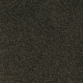 STAINMASTER TruSoft Chimney Rock Brown/Tan Textured Indoor Carpet