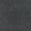 Dixie Group Trusoft Chimney Rock Gray/Silver Textured Indoor Carpet