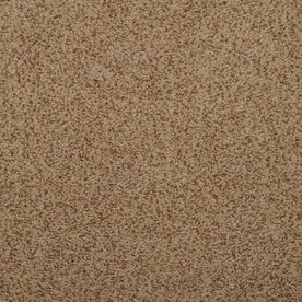 Dixie Group Luminosity Brown/Tan Textured Indoor Carpet