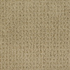 Dixie Group Trusoft Salena Yellow/Gold Fashion Forward Indoor Carpet
