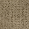 Dixie Group Trusoft Salena Brown/Tan Fashion Forward Indoor Carpet