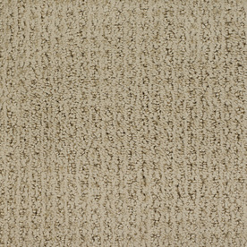 STAINMASTER TruSoft Gallery Brown Cut and Loop Indoor Carpet