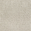 Dixie Group Trusoft Salena Cream/Beige/Almond Fashion Forward Indoor Carpet