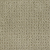 Dixie Group Trusoft Salena Green Fashion Forward Indoor Carpet