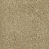 Dixie Group Regatta Yellow/Gold Fashion Forward Indoor Carpet