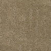 Dixie Group Trusoft Regatta Brown/Tan Fashion Forward Carpet
