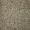 Dixie Group Trusoft Regatta Brown Fashion Forward Carpet