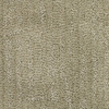 Dixie Group Regatta Cream/Beige/Almond Fashion Forward Indoor Carpet