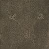 Dixie Group Trusoft Columbia Valley Brown/Tan Fashion Forward Indoor Carpet