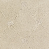 Dixie Group Trusoft Columbia Valley Cream/Beige/Almond Fashion Forward Indoor Carpet