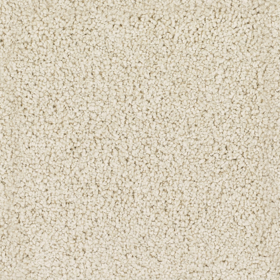beige carpet texture. Perfect Cream Carpet Texture R Inside Design Decorating Beige